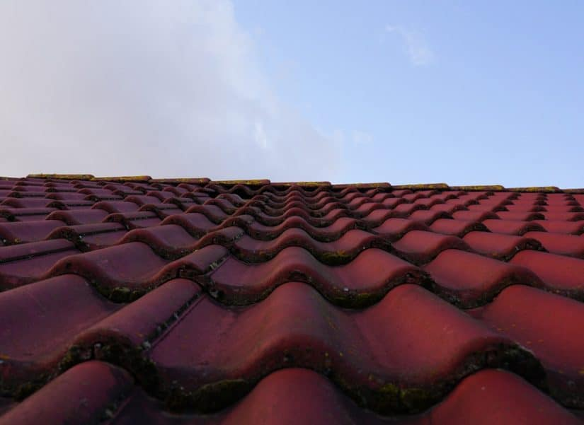 Signs You Need Your Shingle Roof Replaced